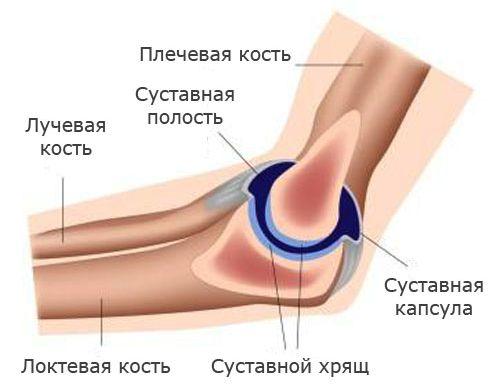 Изображение - Признаки перелома в локтевом суставе 2713-1