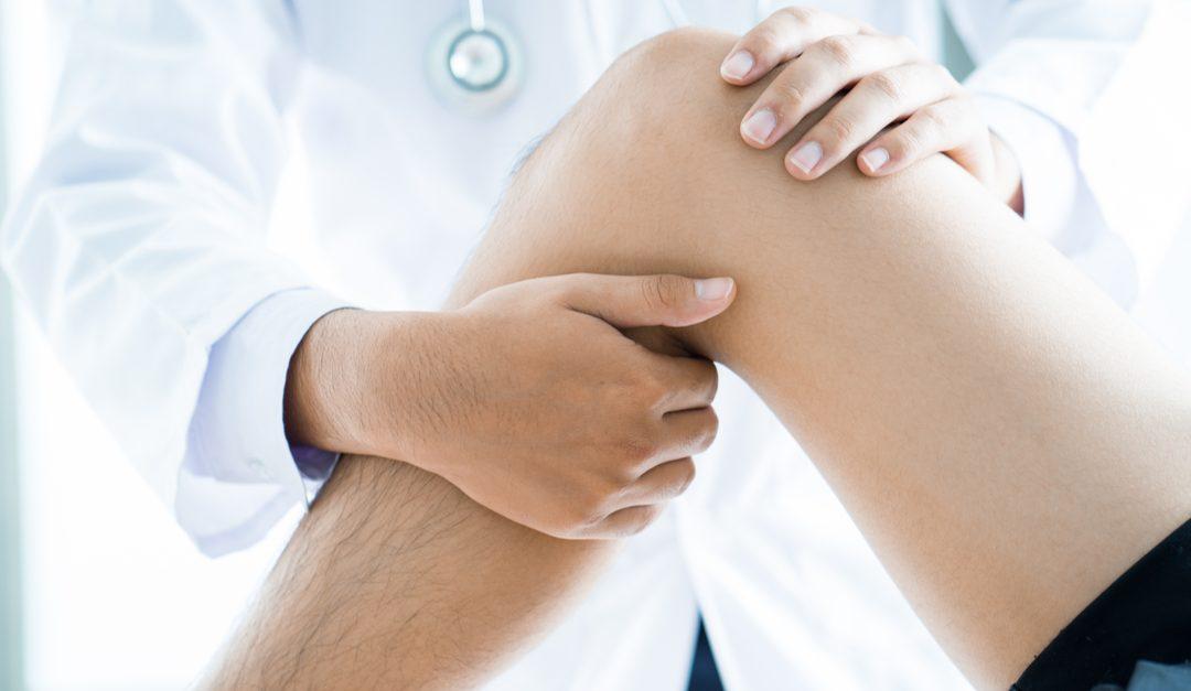 Вывих коленной чашечки (надколенника) у собак: симптомы, лечение
